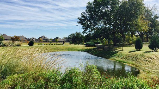 Trinity_Falls_corner_trees_pond
