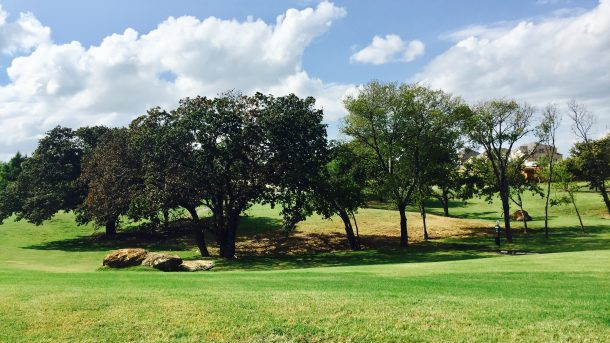 Wildridge-OakPoint-landscape