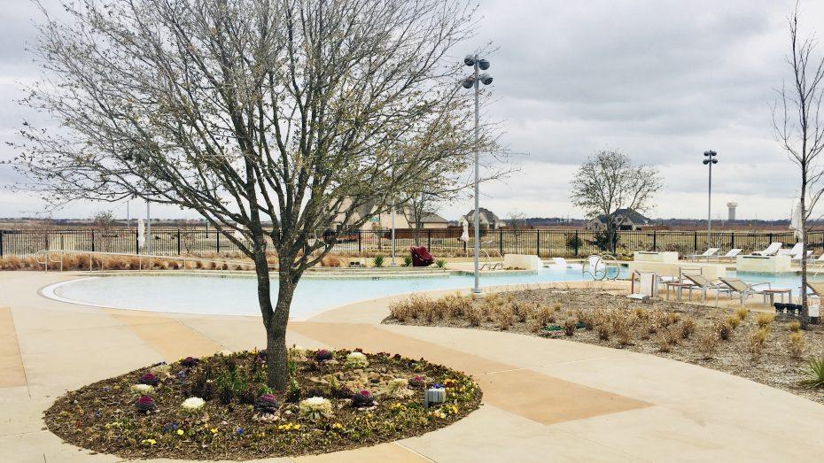 Hollyhock-pool-2