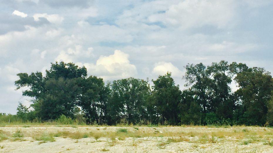 Auburn-Hills-greenbelt