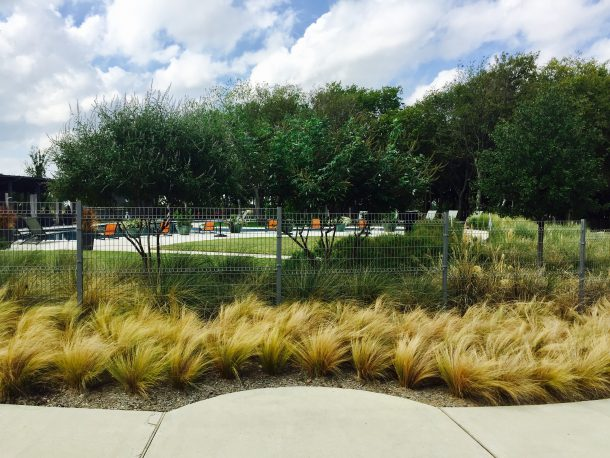 Union-Park-pool-1